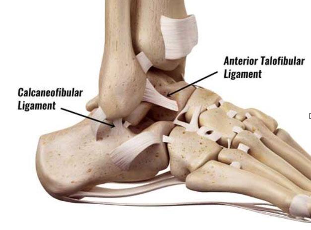 Ankle injury at Fay Pedler